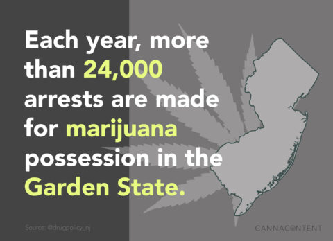 cannabis marketing nj marijuana arrest statistics