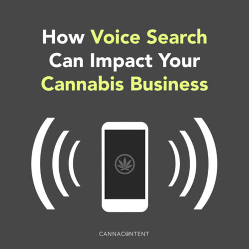 How Will Voice Search Impact Your Cannabis Business?