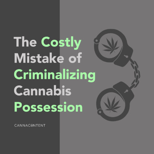The Costly Mistake of Criminalizing Cannabis Possession
