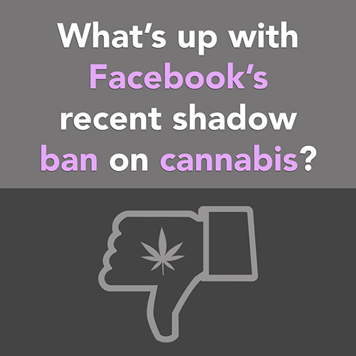 What's up with Facebook's recent shadow ban on cannabis?