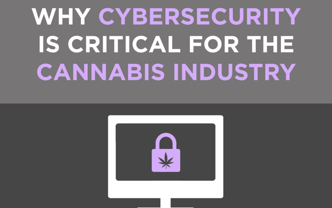 Why A Secure Website is Critical for Cannabis Businesses